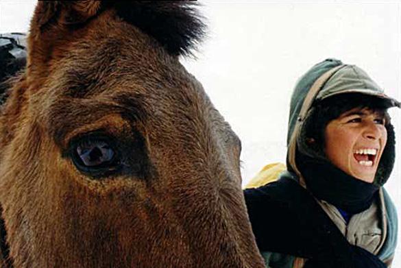 ivresse_chevaux_WEB